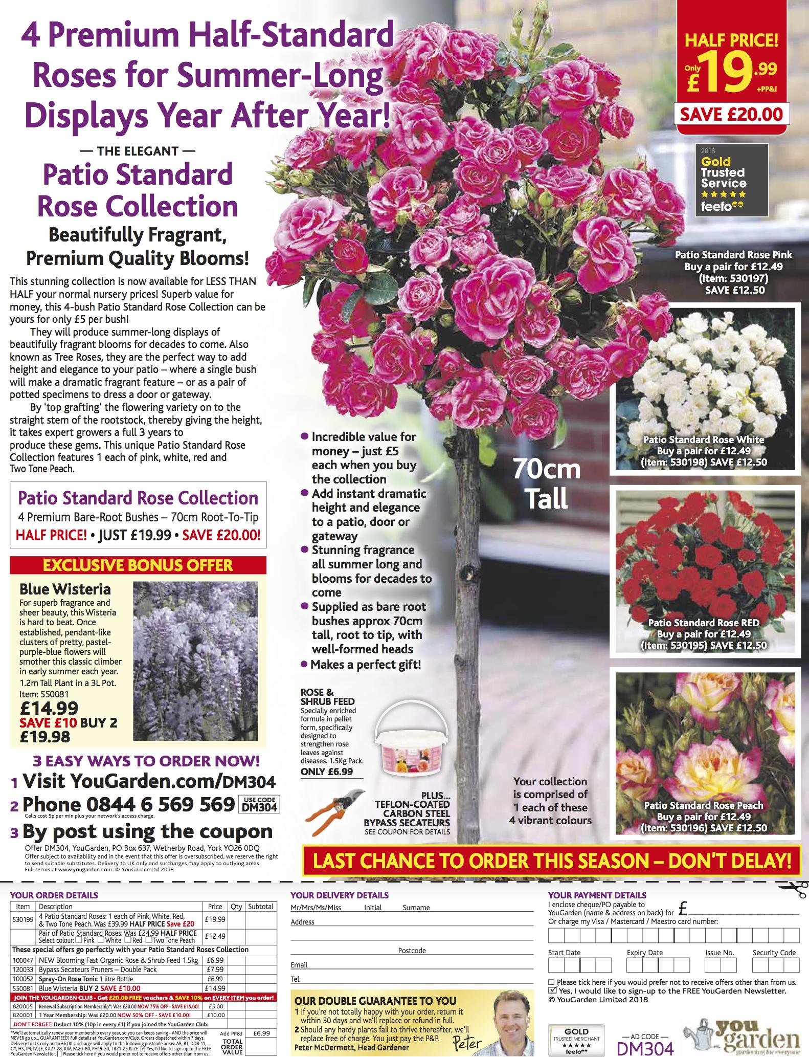 YOUGDN Patio Roses - DMAIL B 19.4